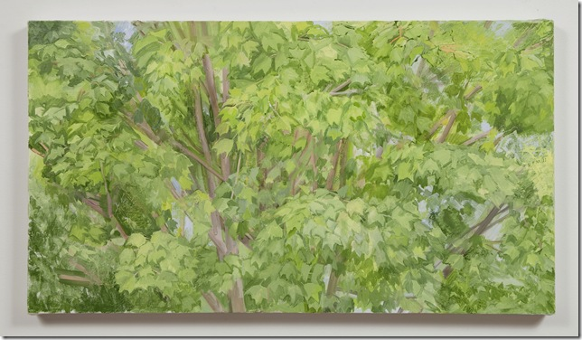 The Maple Tree (Summer) (2011), by Sylvia Plimack Mangold.