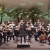 Symphony of the Americas marks 25-year milestone
