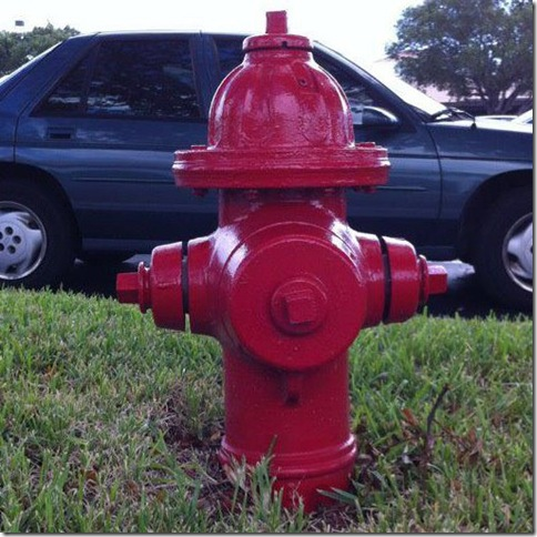 Johnny Pump, the fire hydrant that led to the book.
