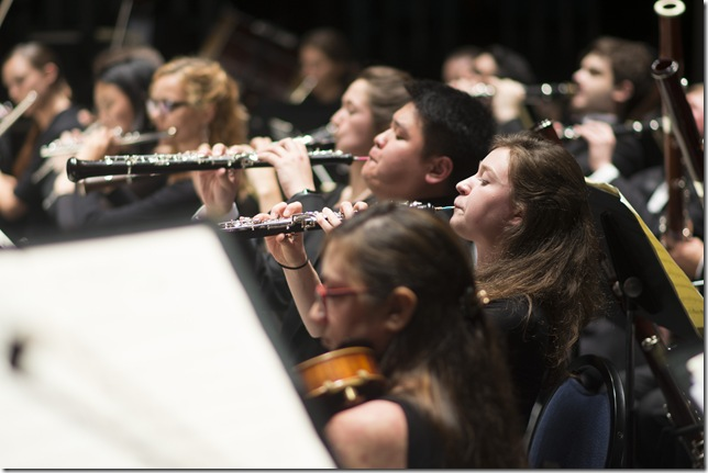 Members of the Miami Summer Music Festival Orchestra. (Photo by Margarita Rentis)