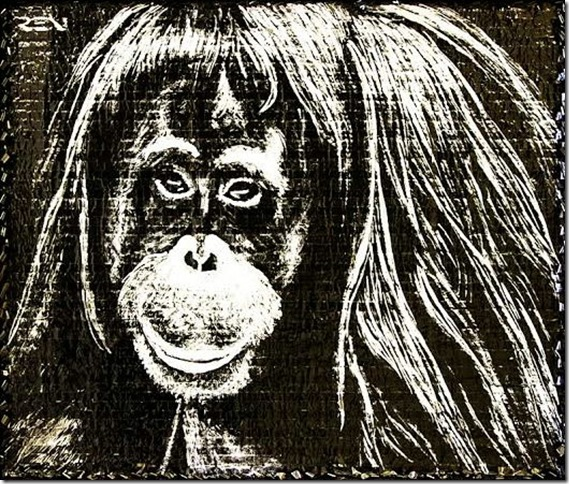 Geri, the Orangutan From the Entertainment Industry, by Agata Ren.