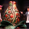 Community theater: Fine cast animates 'Little Shop' at Delray Playhouse
