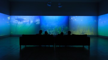 At the Norton: Underwater Giverny is fresh take on Monet