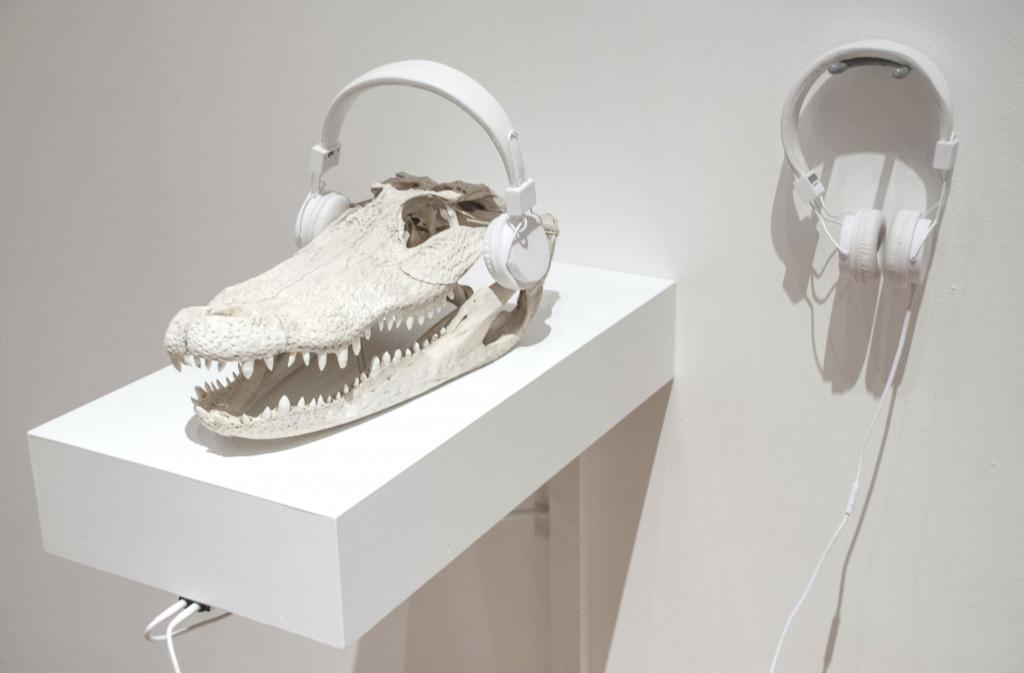 Tuning into the Crocodilian Brain, by Sergio Vega (Gainesville).