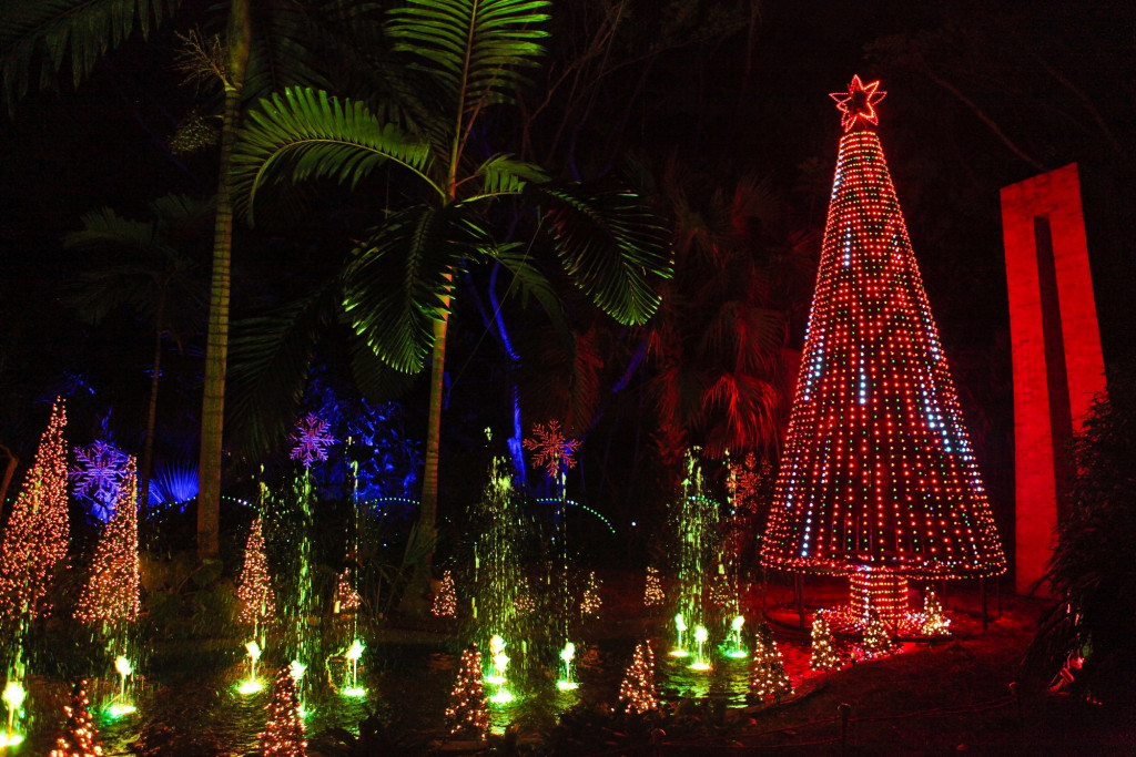 The Music and Light Tree at the Festival of Trees. (Photo by Krystal Zaskey)