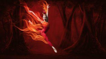 Sumptuous 'Firebird' a treat at MCB